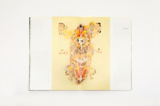 cahier d'artiste / Christine Streuli, Pro Helvetia (Herausgeber), Beat Wismer, Pro Helvetia, collection cahiers d'artistes, 2004