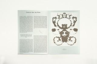 Künstler, Kritisches Lexikon der Gegenwartskunst / Christine Streuli, Hans-Joachim Müller (Herausgeber), Konrad Tobler, ZEIT Kunstverlag, 2011