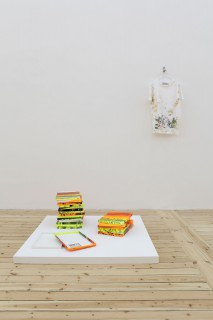 Christine Streuli: , 2014, Sfeir-Semler Gallery, Hamburg / Germany