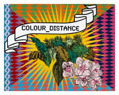 Christine Streuli: colour_distance, 2007, Swiss Pavilion (with Yves Netzhammer), 52. Venice Biennale, Venice / Italy